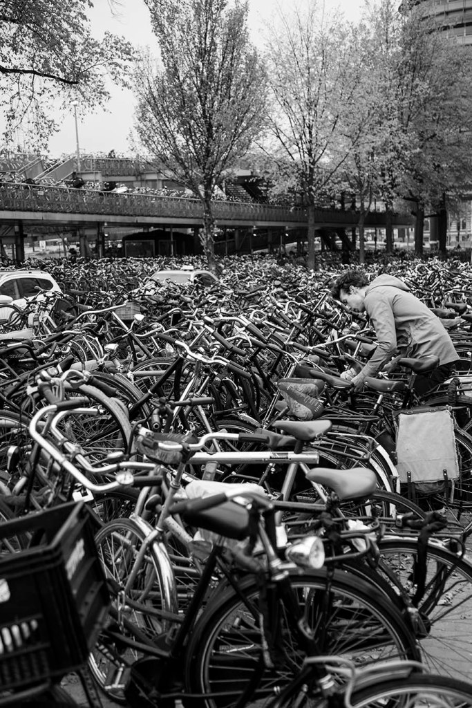 Amsterdam - Bike City