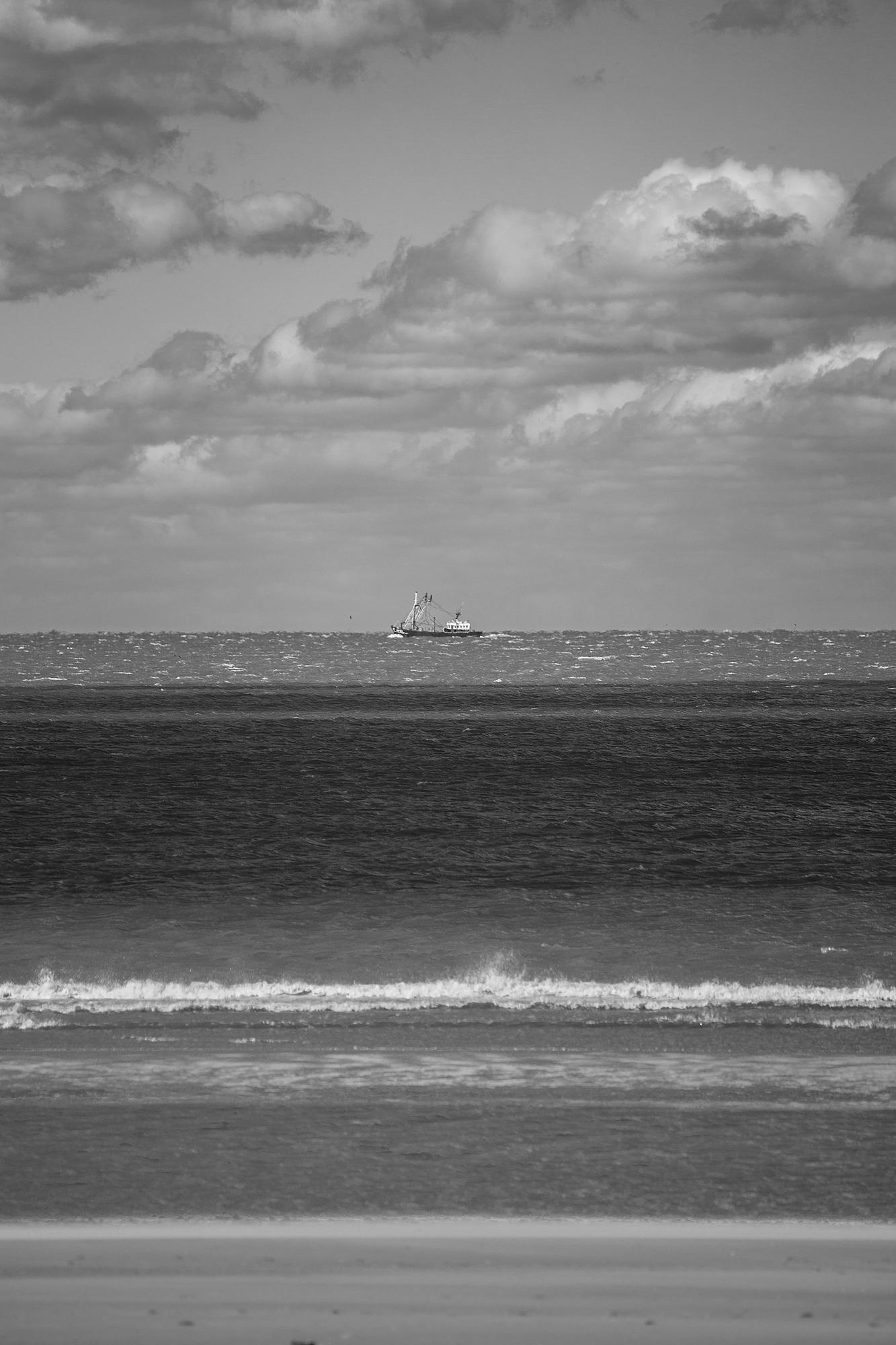 The Trawler