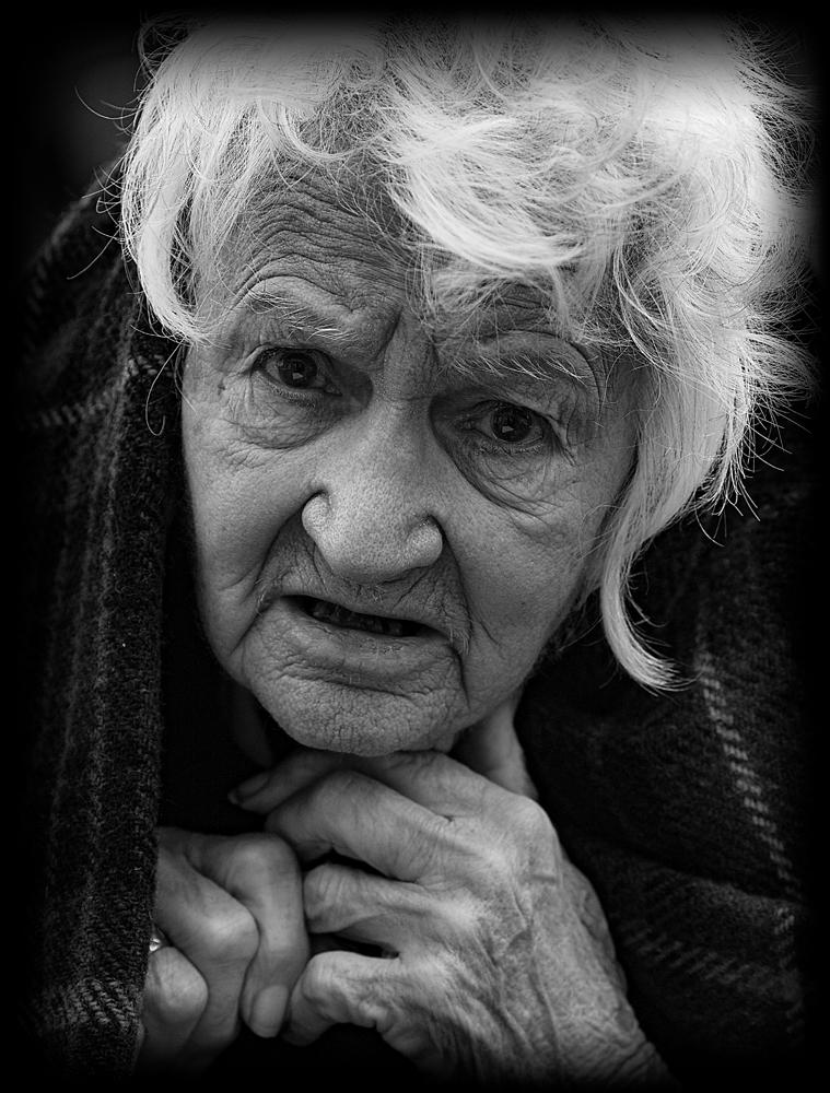 The Senior Citizen
