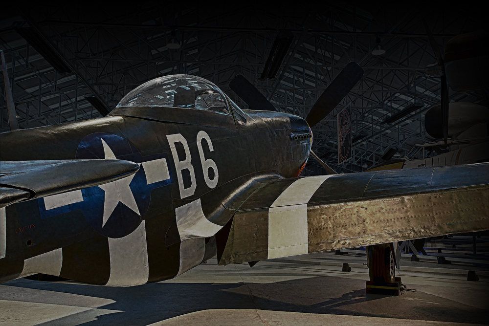 The American Fighter