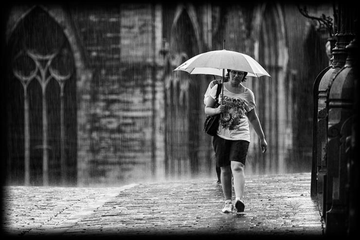 The Rain Walker