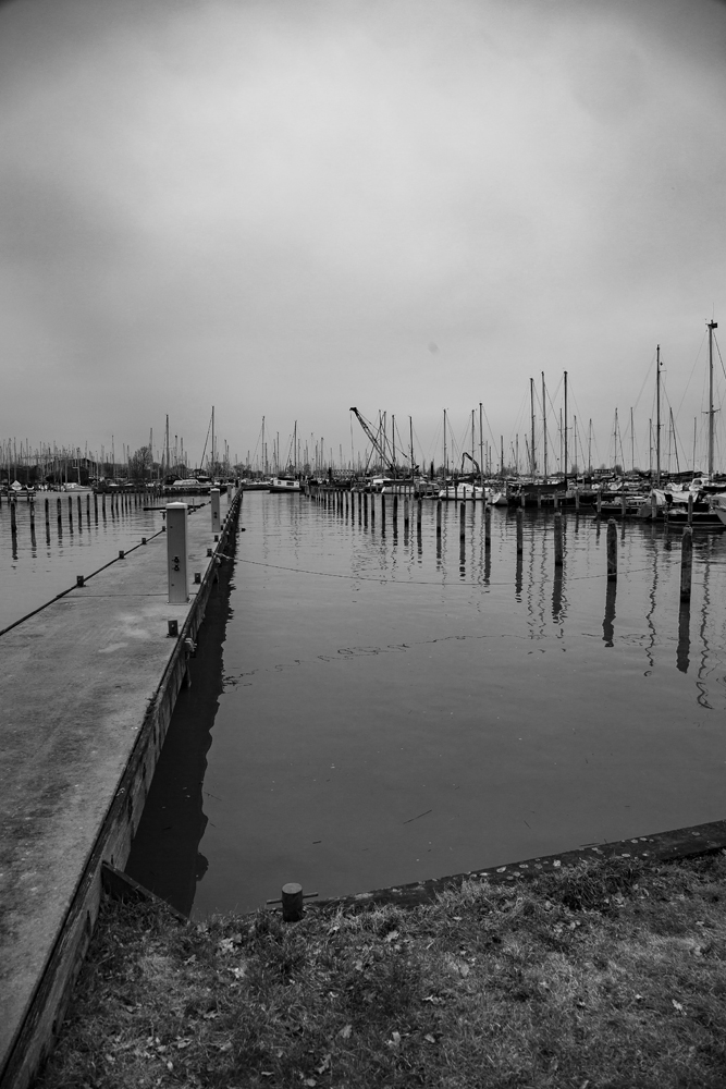 The Empty Harbour