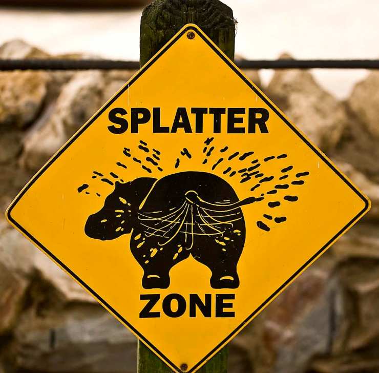The Splatter Zone