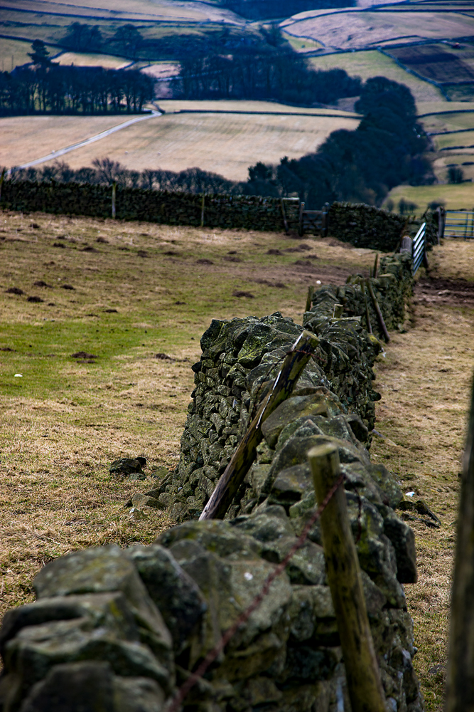 The Dry Stone Wall