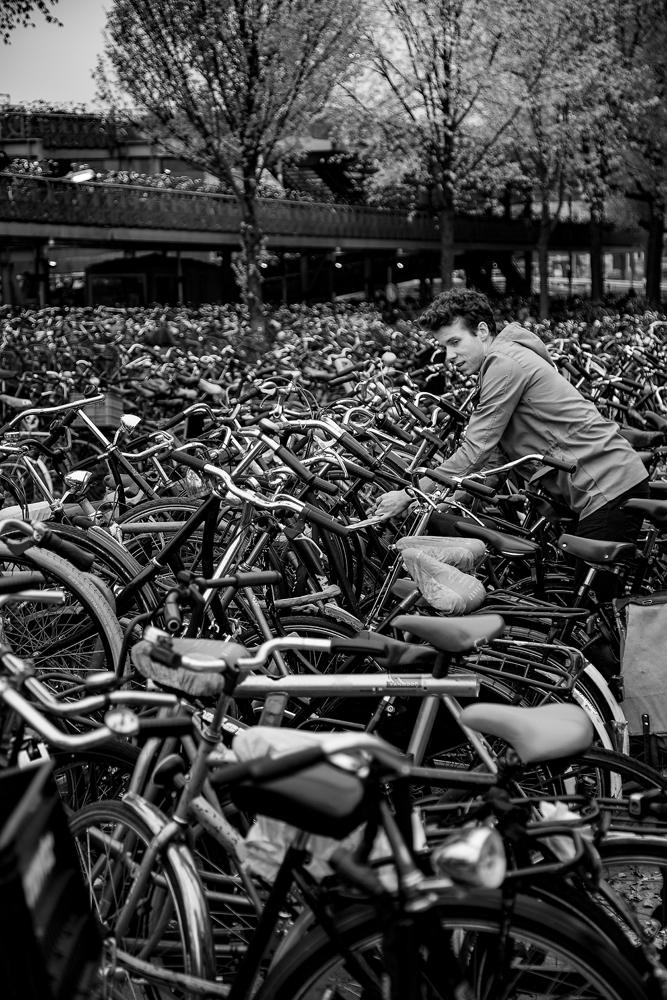 The Bike Park