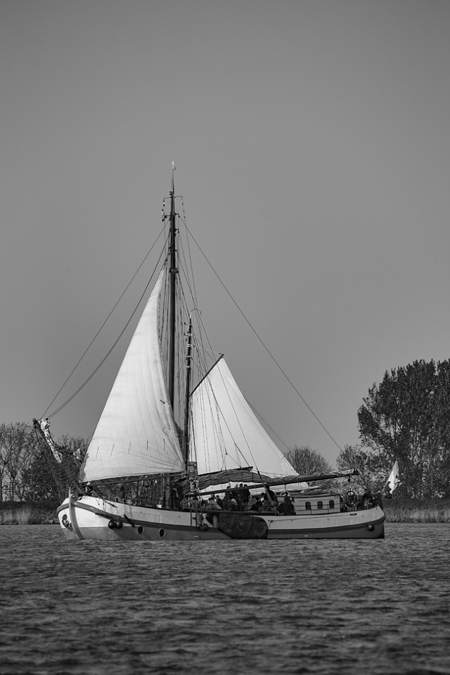 The Brown Boat
