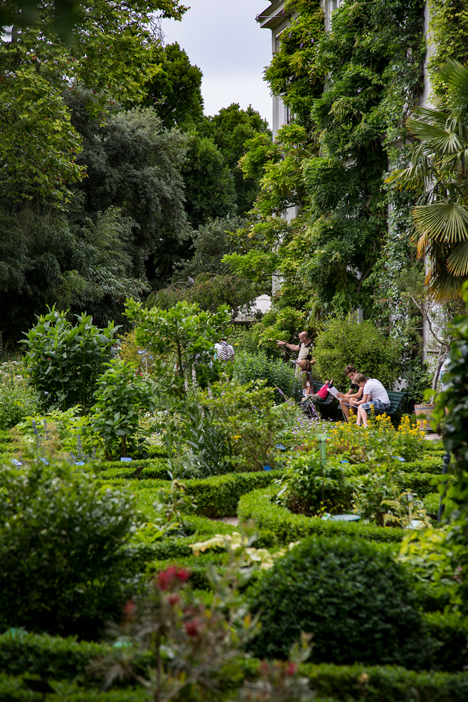 The Botanical Gardens Amsterdam