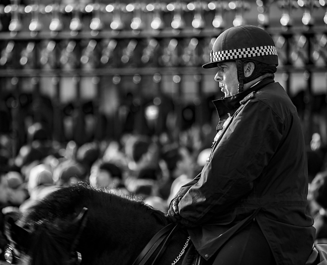 The Mounted Police Officer