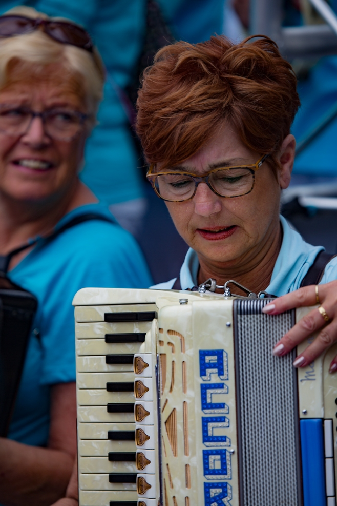 The Lady Accordionist