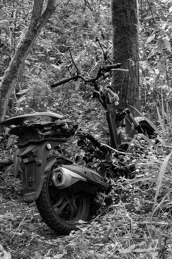 The Lost Bike