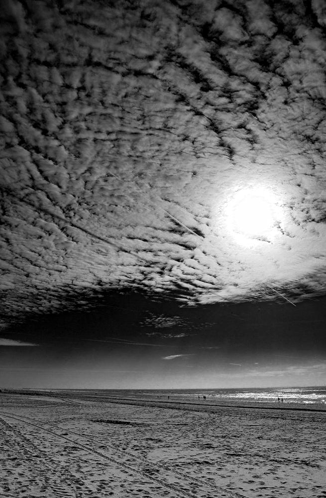 The Beach (1)