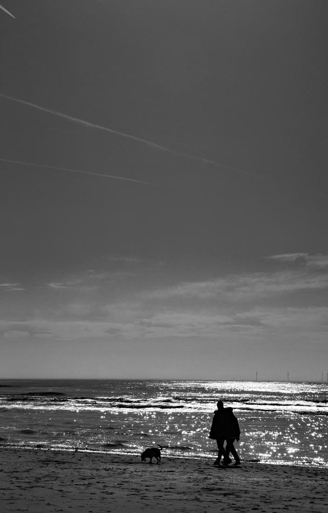 The Beach (2) - The Dog Walk