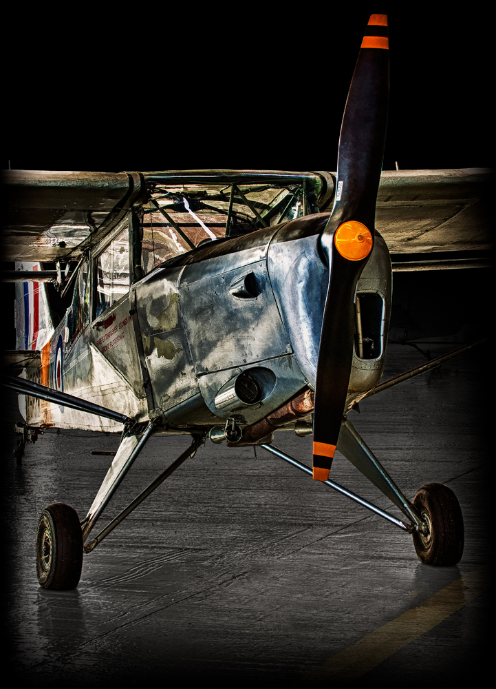 The Auster