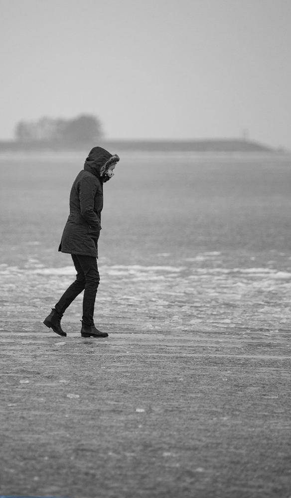 The Walk on the Frozen Markermeer