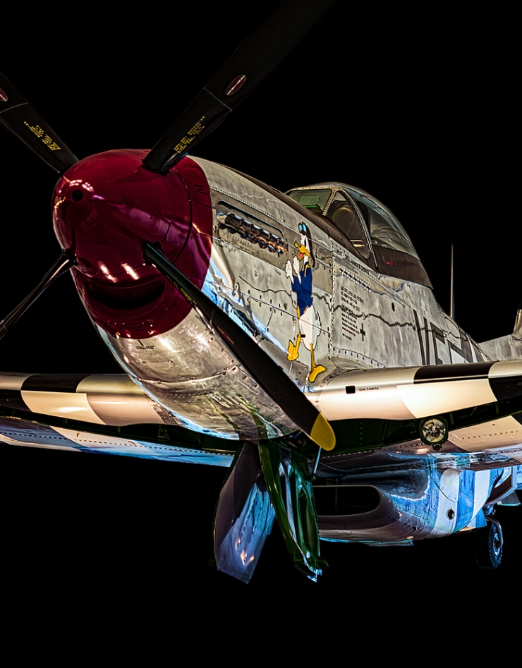 The P51 Mustang