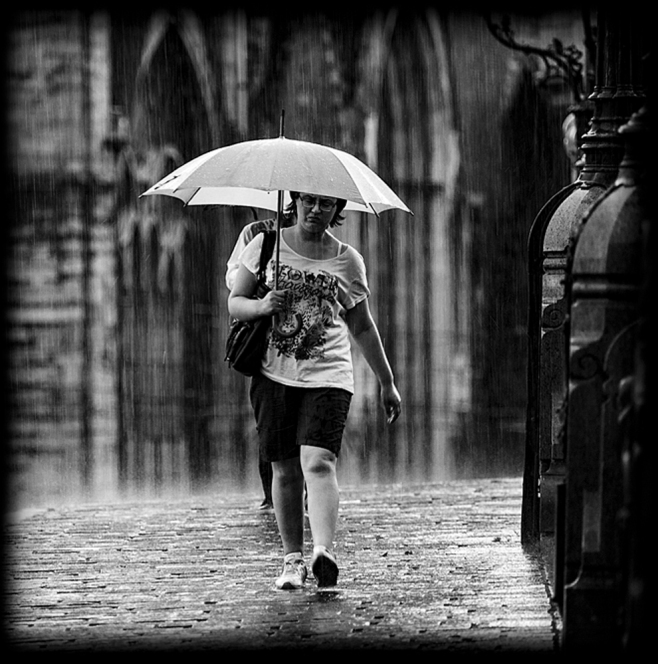 The Walk in the Rain