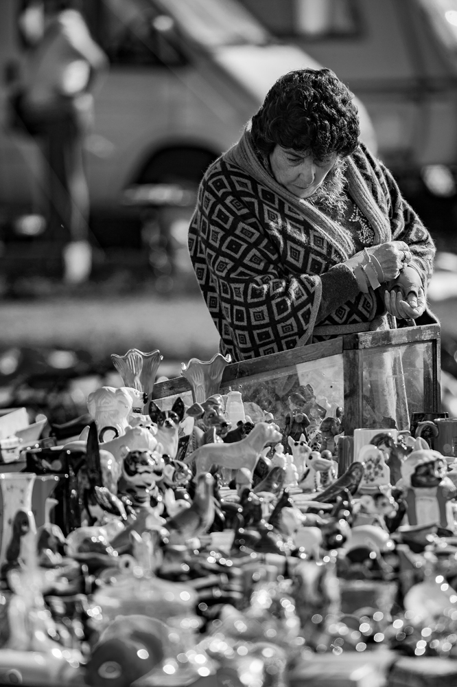 The Flea Market Lady