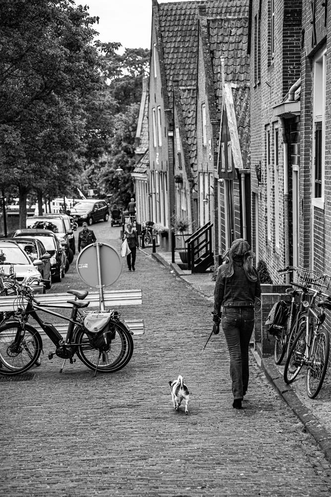 The Dog Walk - Richard Broom Photography