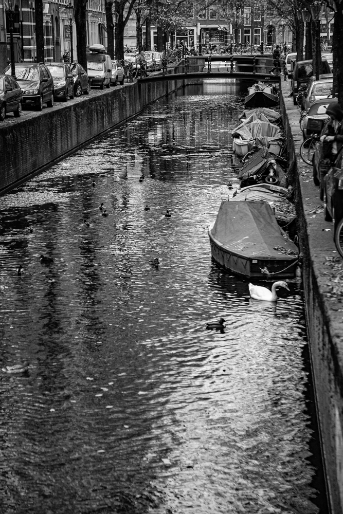 The Amsterdam Canal - Richard Broom Photography