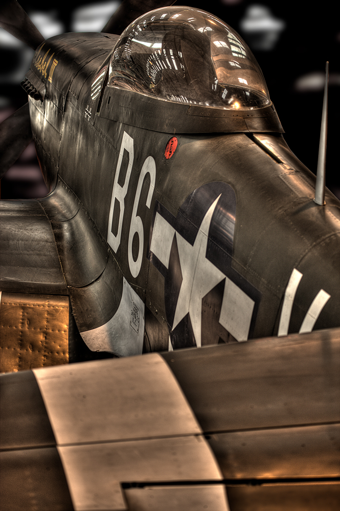 The Fighter - Richard Broom Photography