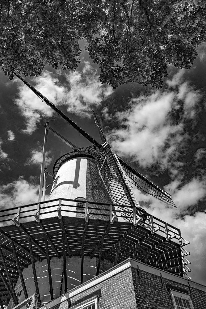 The Windmill - Richard Broom Photography