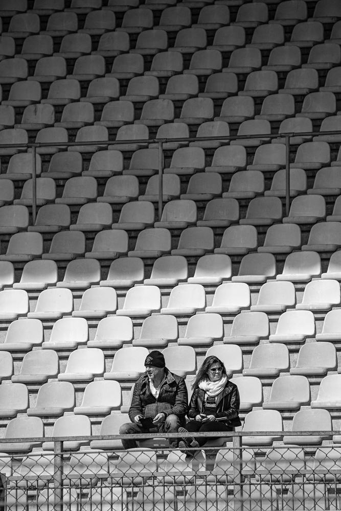 The Audience - Richard Broom Photography