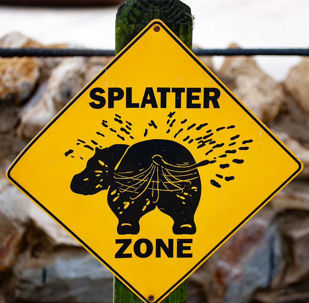 The Splatter Zone - Richard Broom Photography