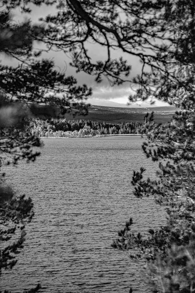 The View Across the Loch - Richard Broom Photography