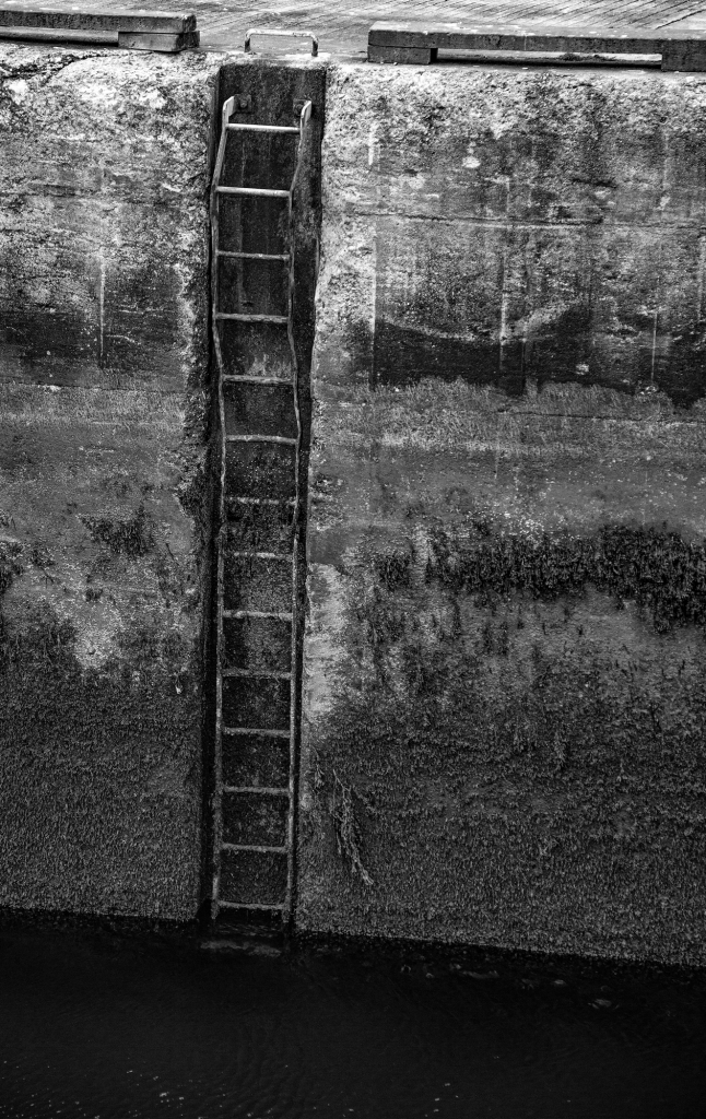 The Wonky Ladder - Richard Broom Photography
