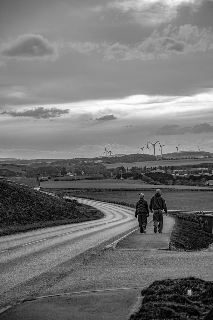 The Late Evening Walkers