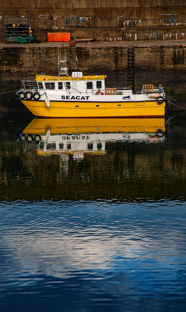 The Sea Cat - Richard Broom Photography