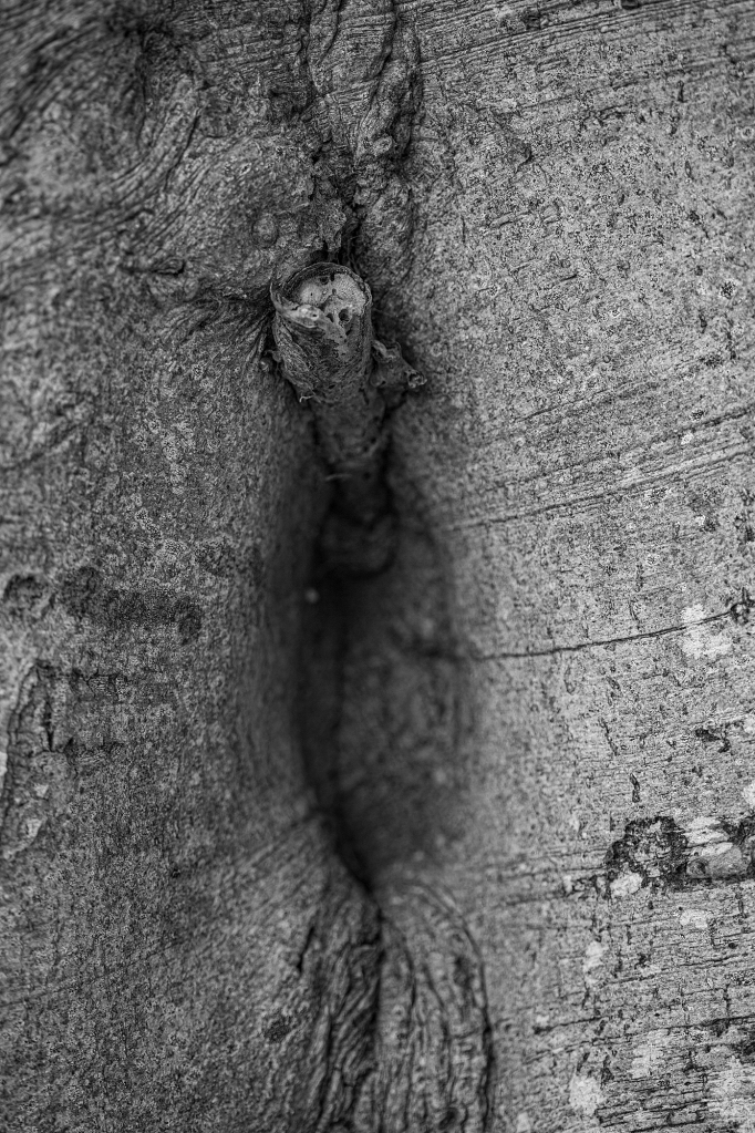 The Hole Series (3): the hmmmm hole - Richard Broom Photography