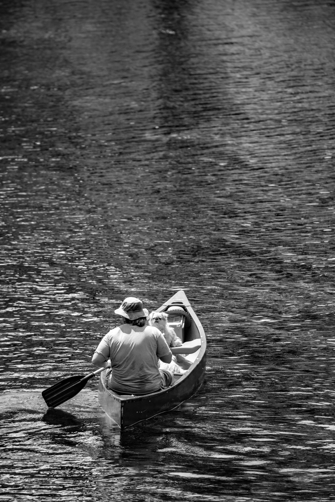 The lady, the canoe and the dog - Richard Broom Photography