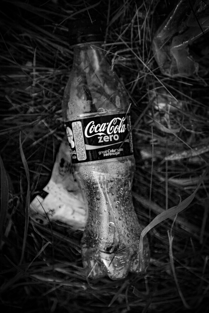 The Coca-Cola Bottle